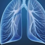 What Are The Effects Of Yoga On The Respiratory System?