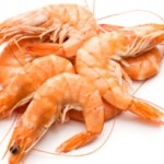 Could Prawns Pack A Punch Against Senegal Parasitic Disease?