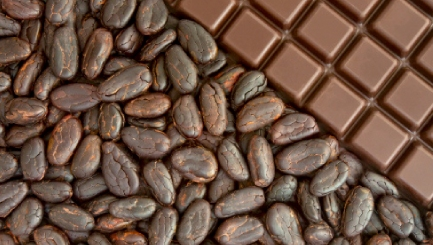 What can cocoa beans do for your wellbeing