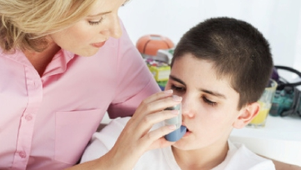Risk for Children with Asthma in Lone Parent Households