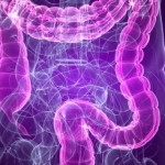 How To Cleanse Your Colon Safely and Effectively