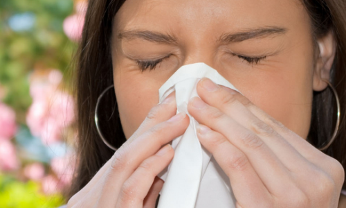 Allergens in Your Home How to Combat the Worst Offenders